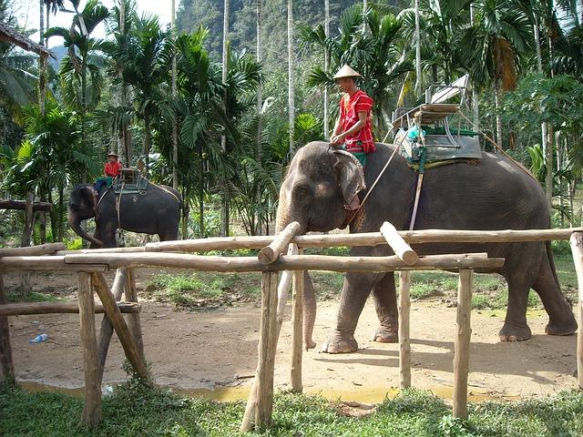 thailand-115683_640
